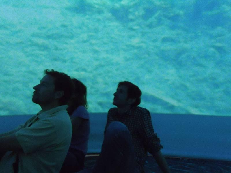 Audiovisual interior del Cubo Exposición Life Posidonia