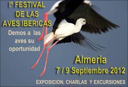 festival aves ibericas cabo de gata