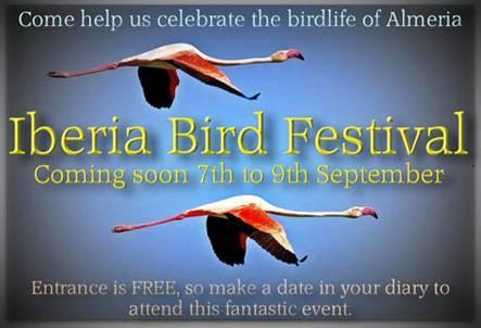 Iberia Bird Festival en cabo de gata rodalquilar