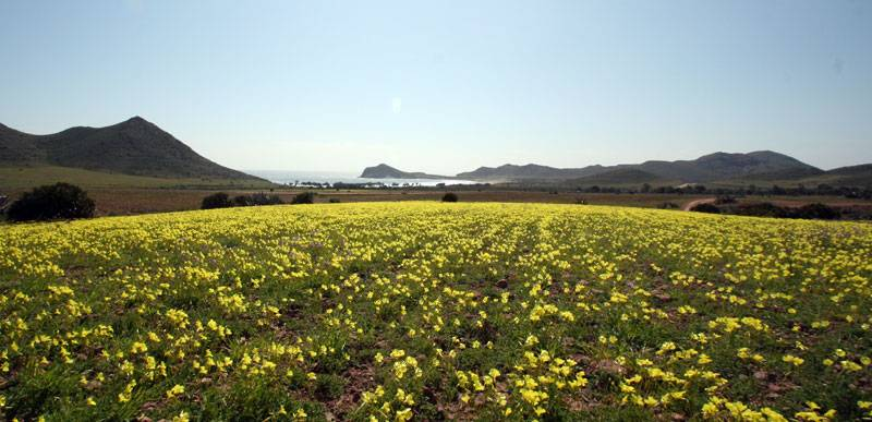 Playa de los Genoveses  Parque Natural Cabo de Gata Nijar