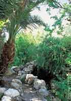 Fuente Cala de San Pedro Cabo de Gata