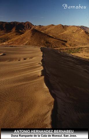 Duna Ranpante de Monsul Cabo de Gata