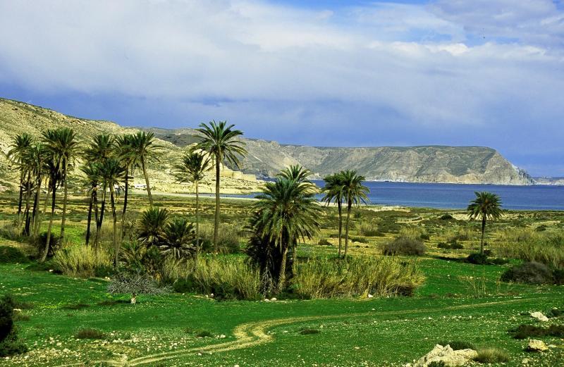 Valle de Rodarquilar