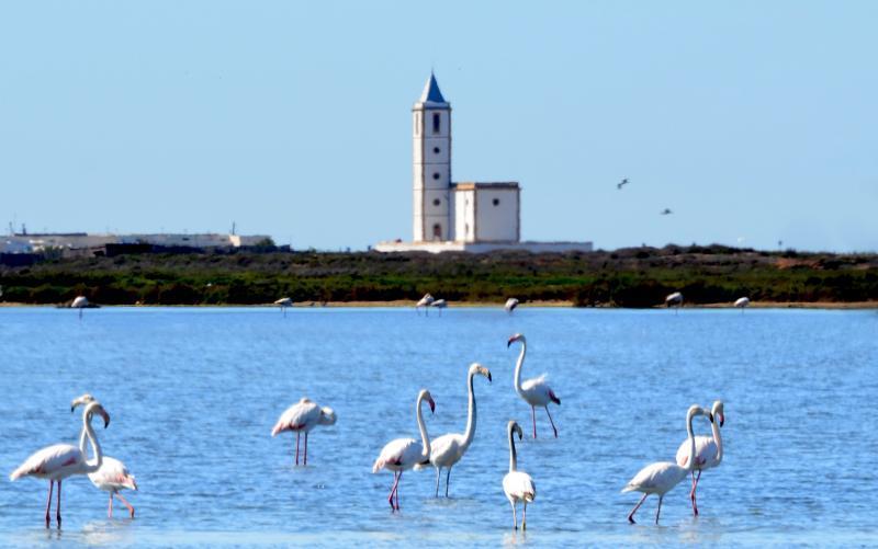 Salinas de cabo de Gata ,Almeria