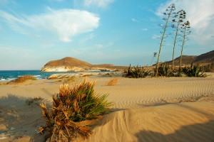 Los visitantes a las playas con  acceso regulado de Cabo de Gata