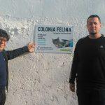COLONIAS FELINAS 2 1 150x150