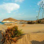Playa De Los Genoveses 150x150