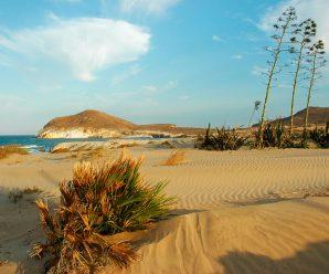 Playa De Los Genoveses 298x248