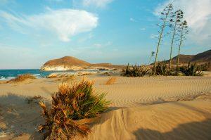 Playa De Los Genoveses 300x199