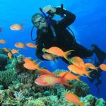 Buceo 150x150