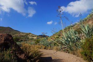 Las Presillas Altas Cabo De Gata Almeria 300x200