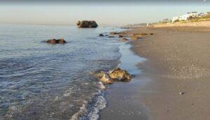 Amanecer Playa De La Galera Cabo De Gata Almeria 300x172