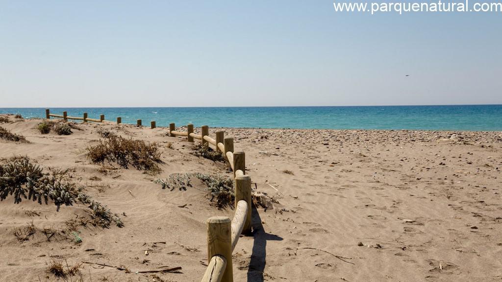 Sendero Playa Torre Garcia Cabo De Gata Almeria